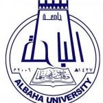 """إبراهيم البلوشي مديراً عاماً لـ""""هيل آند نولتون"""" في السعودي"""