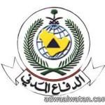 شرطة البجادية تلقي القبض على 31  مخالفا نظام الاقامة