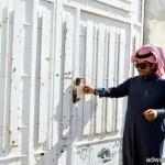 صالح كامل: أرجو أن يكون «ساهر» في ميزان حسناتي..والسعودي ليس على رأسه ريشة