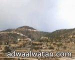 حاجان من طاجكستان يصلان المدينة المنورة مشياً على الأقدام