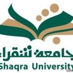 انطلاق مزاد الشيخ الطجل لنوادر الأغنام الحرية الجمعة القادم بمكة المكرمة