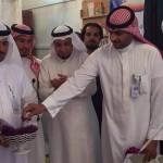 """""""الطيب"""" لملك البحرين: ندعم وحدة المملكة ونرفض التدخل في شئونها"""