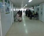 بلدية الذيبية تستكمل المرحلة الثانية بحديقة الياسمين
