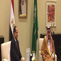 """قمة """"السيسي- سلمان"""".. اتفاق على دعم التنسيق المشترك في ظل وحدة المصير"""