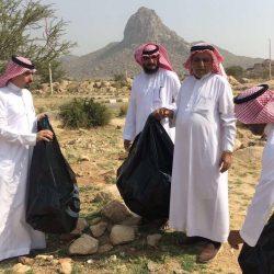 نائب خادم الحرمين يلتقي أعضاء مجلس النواب اليمني المؤيدين للحكومة اليمنية