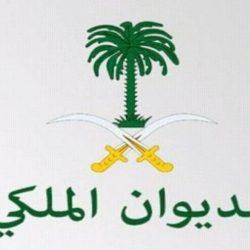 لجنة الزواج الجماعي تزُف 12 عريساً بالمدينة المنورة