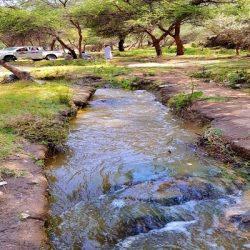 أفراح السودان وابتسامات اليمن تراقب وصول ضيوف خادم الحرمين إلى أرض الحرم