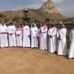 """مركز الأبحاث الزراعي بالسعودية ينجح في زراعة """" الكاجو """" في جازان"""