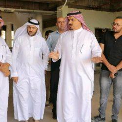 37طن مواد غذائية من مركز الملك سلمان للنازحين من صنعاء إلى مأرب