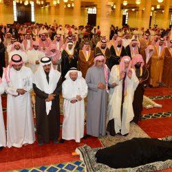 جامعة القصيم تُعلن عن حاجتها لمعيدين سعوديين