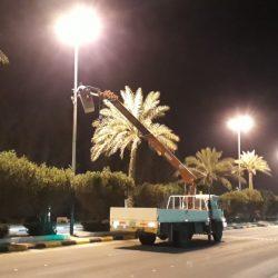 المالكي يؤكد على أنّ الحوثيين صنع إيراني لعملية انقلاب وأداة لتهديد دول الجوار