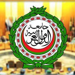 الجيش الوطني اليمني يحرر مواقع جديدة بجبهة المصلوب في محافظة الجوف