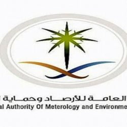 نادي النور يحقق لقب بطولة الاتحاد السعودي لكرة اليد الشاطئية