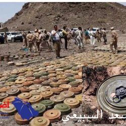 """""""ناطق الجيش اليمني"""" يلوح بخيارات أخرى في حال فشلت جهود إقناع المليشيا بالانسحاب من موانئ الحديدة"""