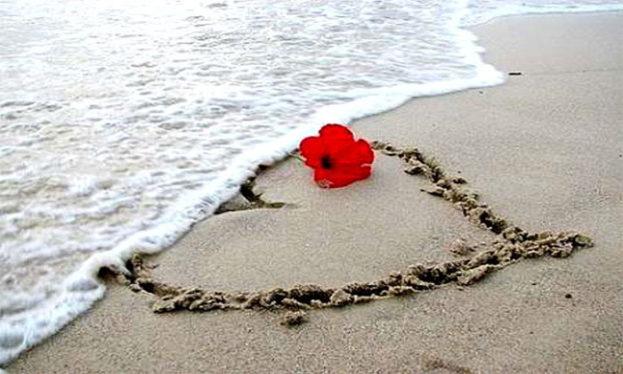 هُدنة حُب