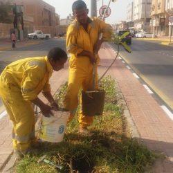 بلدية الجبيل تطلق حملات نظافة شاملة لإزالة الملوثات البصرية في حي غرب المزارع
