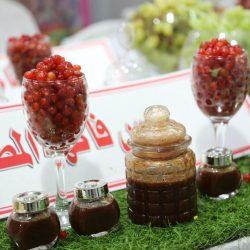 وكيل محافظة عيون الجواء يزور مهرجان الخيمة التسويقية ويشيد بفعالياته