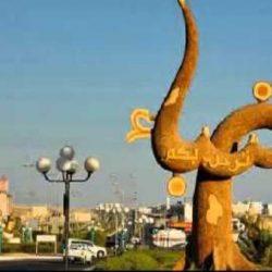 محمد خلوفة يروي حكايته: تربية النحل مهنة صبر وتحدٍ.. شمع عسل السدر عليه اقبال من الزوار