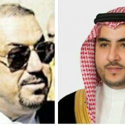 الإرياني: نثمن دور السعودية والإمارات باحتواء أحداث عدن