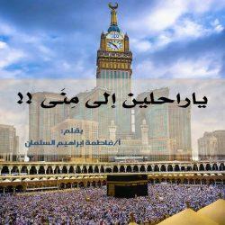 أربعة أركان تدعم السياحة السعودية