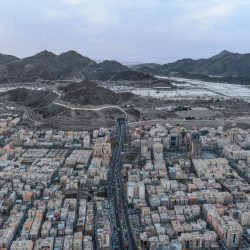 البدء في تنفيذ مشروعي تطوير مطار الأمير عبدالمجيد بن عبدالعزيز في العلا ومسرح مرايا