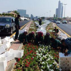 بلدية القطيف تعلن جاهزيتها  لاستقبال موسم الأمطار