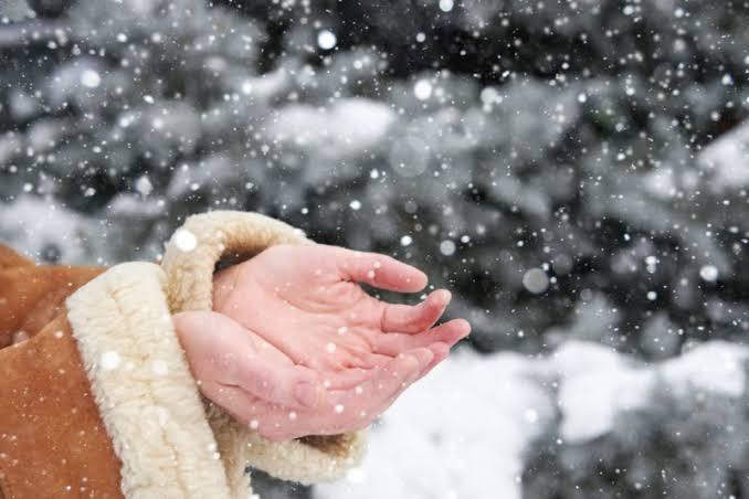 البرد القارس