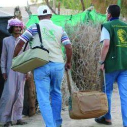 مدير عام فرع وزارة البيئة يكرم موظفي محجر الرقعي