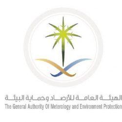 """بالفيديو..فرع وزارة البيئة والمياه والزراعة بحائل يسيطر على أسراب الجراد بمزراع """"مرفية والصنينا"""""""