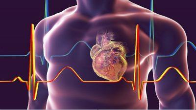 فيروس كورونا قد يسبب نفس الضرر الذي تحدثه النوبات القلبية