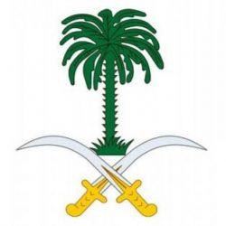 المملكة تدعو إلى التعاون الدولي لمواجهة أثر جائحة كوفيد 19