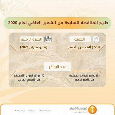 """المؤسسة العامة للحبوب تطرح مناقصة لاستيراد """"720"""" ألف طن شعير"""