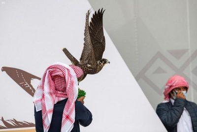 انطلاق النسخة الثالثة لمهرجان الملك عبدالعزيز للصقور