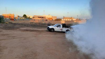 """""""بلدية رنية"""" تكثيف عمليات النظافة و الرش لمكافحة الباعوض و الأوبئة"""