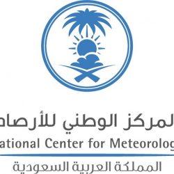 """وزير الإعلام اليمني"""" تصعيد الحوثيين يؤكد استمرار تهريب الأسلحة الإيرانية ووصولها إليهم"""