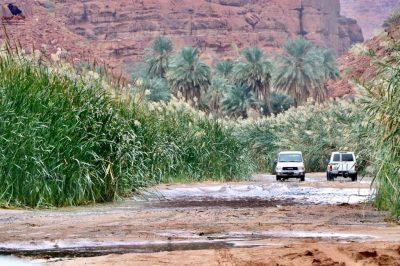 وادي الديسة أرض النخيل والطبيعة الخلابة