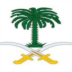 محافظ دومة الجندل يستقبل مدير جوازات المنطقة