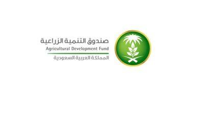 صندوق التنمية الزراعية يوضح شروط قبول طلبات الخدمات الائتمانية