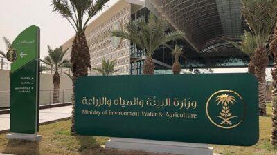 طلب رخصة صيد موسمية.. «البيئة» توضح الخطوات والمتطلبات