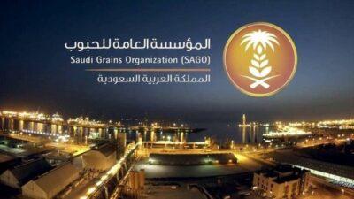 """""""الحبوب"""" تُنهي إجراءات شراء 355 ألف طن قمح من الاستثمارات السعودية بالخارج"""