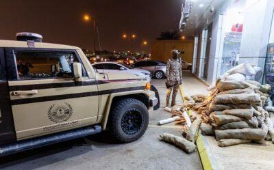 «الأمن البيئي»: ضبط 69 مخالفاً لنظام البيئة لبيعهم حطبًا محليًا لأغراض تجارية