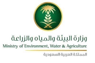 البيئة تطلق خدمة استيراد بذور التجارب للشركات والمؤسسات الزراعية