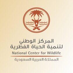 تنسيق أمني يحبط تهريب 5.2 مليون قرص إمفيتامين عبر ميناء جدة الإسلامي