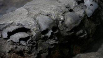 مقبرة تعود لعصر ما قبل التاريخ في السودان تظهر جحيم الحرب منذ الأزل