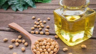 فوائد الطهو بزيت فول الصويا.. يعزز صحة القلب ويخفض الكوليسترول