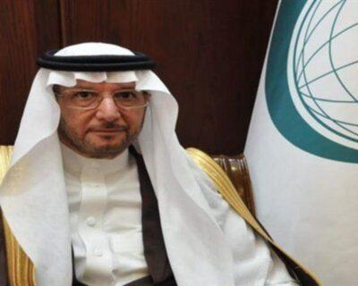"""""""التعاون الإسلامي"""" تؤكد على ضرورة حل الدولتين لتحقيق السلام الشامل"""