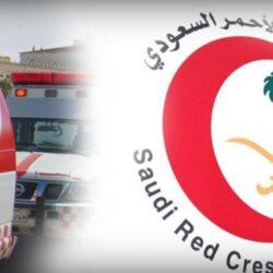 وزير الداخلية: أطلقنا برنامج «هدد» لتنظيم هواية الصيد بالصقور وإعادتها لمواطنها