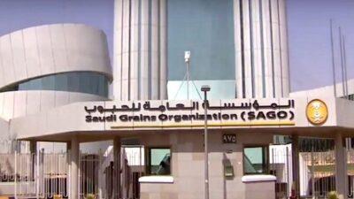 إيداع مستحقات الدفعة الثالثة لـ127 من مزارعي القمح بالسعودية