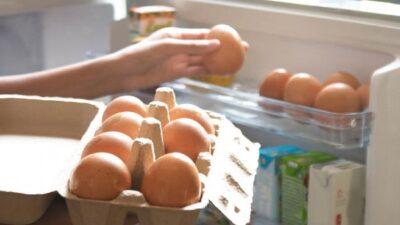 تحذير من حفظ البيض في «باب الثلاجة» بسبب تقلبات الحرارة