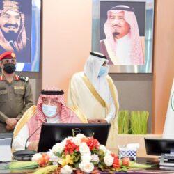 سفير المملكة بالأردن يلتقي بالملك عبدالله الثاني